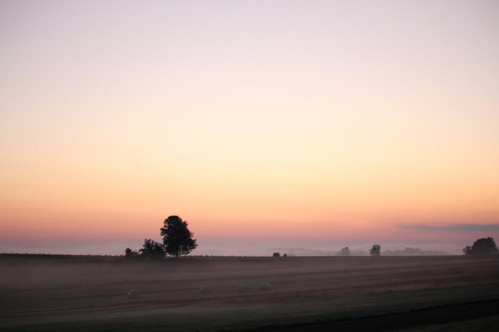 Nebelfelder über Wiesen und Felder
