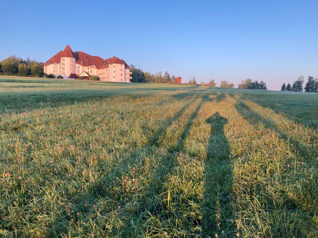 Morgendliches Schattenspiel