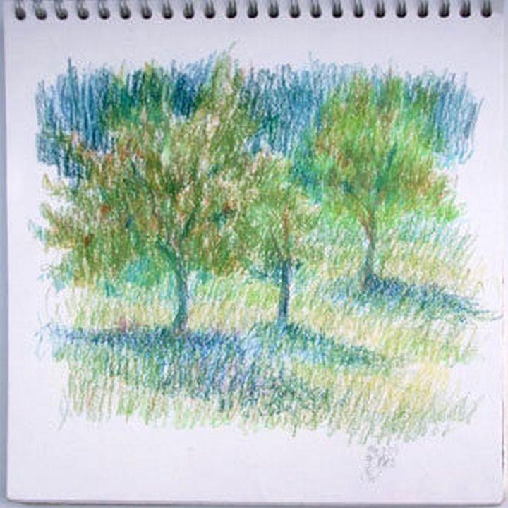 Susanne Wechtitsch: Bäume, Studie