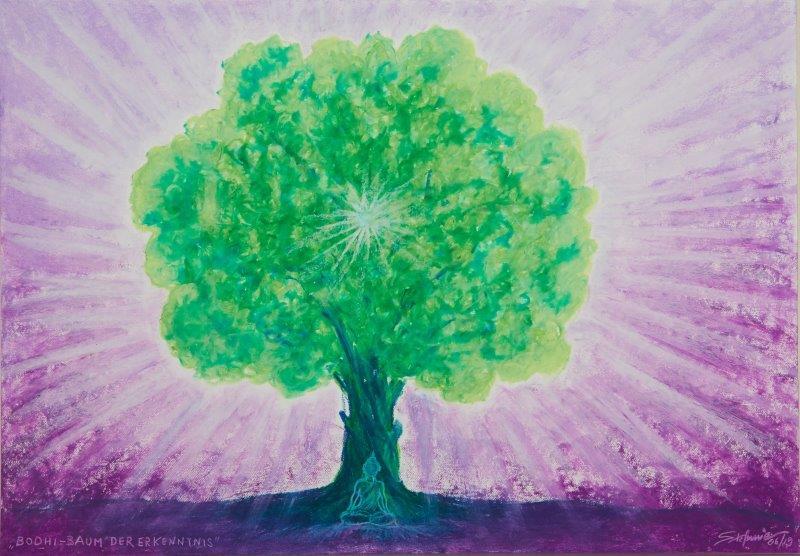 Bodhi - Baum der Erkenntnis      (c) Stefanie Grüssl