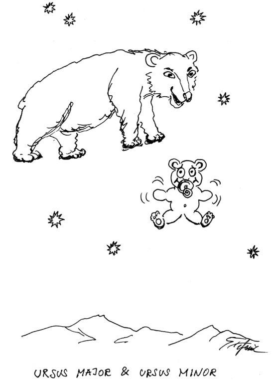 """Ursus Major und Ursus Minor"" © Stefanie Grüssl"