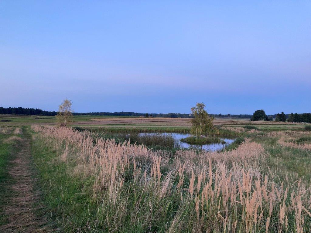 Blaue Stunde am Teich bei Ullrichs