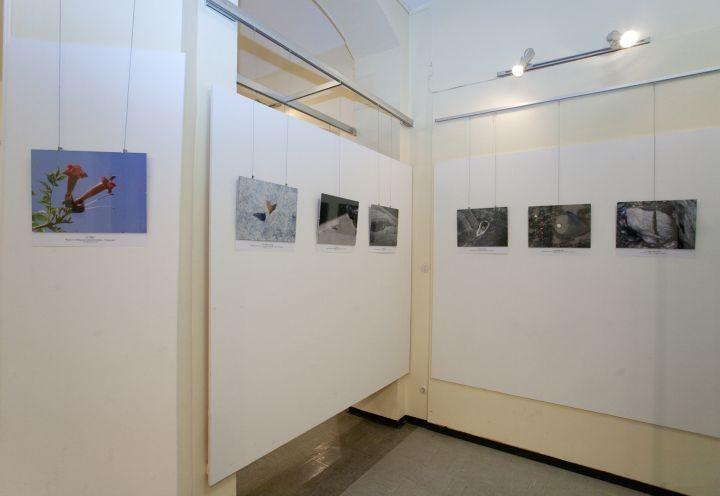 Fotoausstellung im Bezirksmuseum Währing Wien