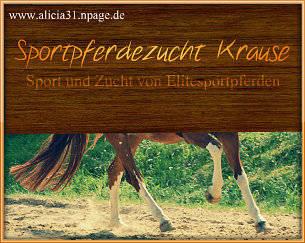 Sportpferdezucht Krause