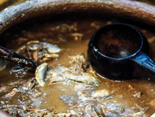 Liquid food fish self made