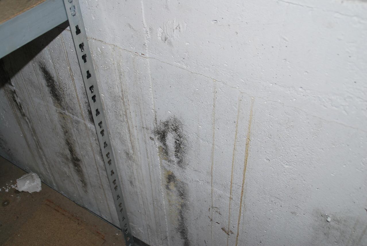 der Hausprüfer :Feuchteschaden im Keller, massive Betonwand, gerissen mit defekter Isolierung