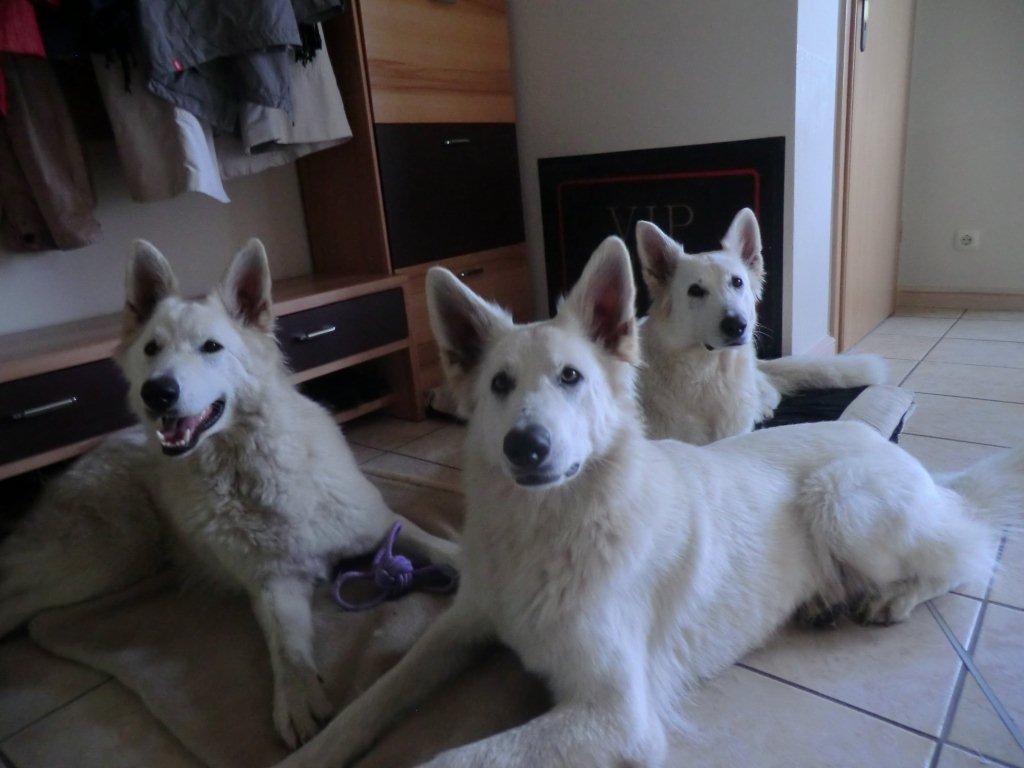 in VIP-Lounge (Kira- Leona, Shameera)