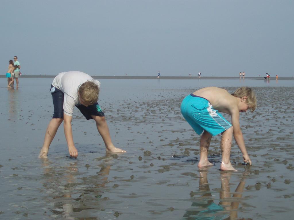 Kelvin und Ian suchen nach Willi, der Wattwurm