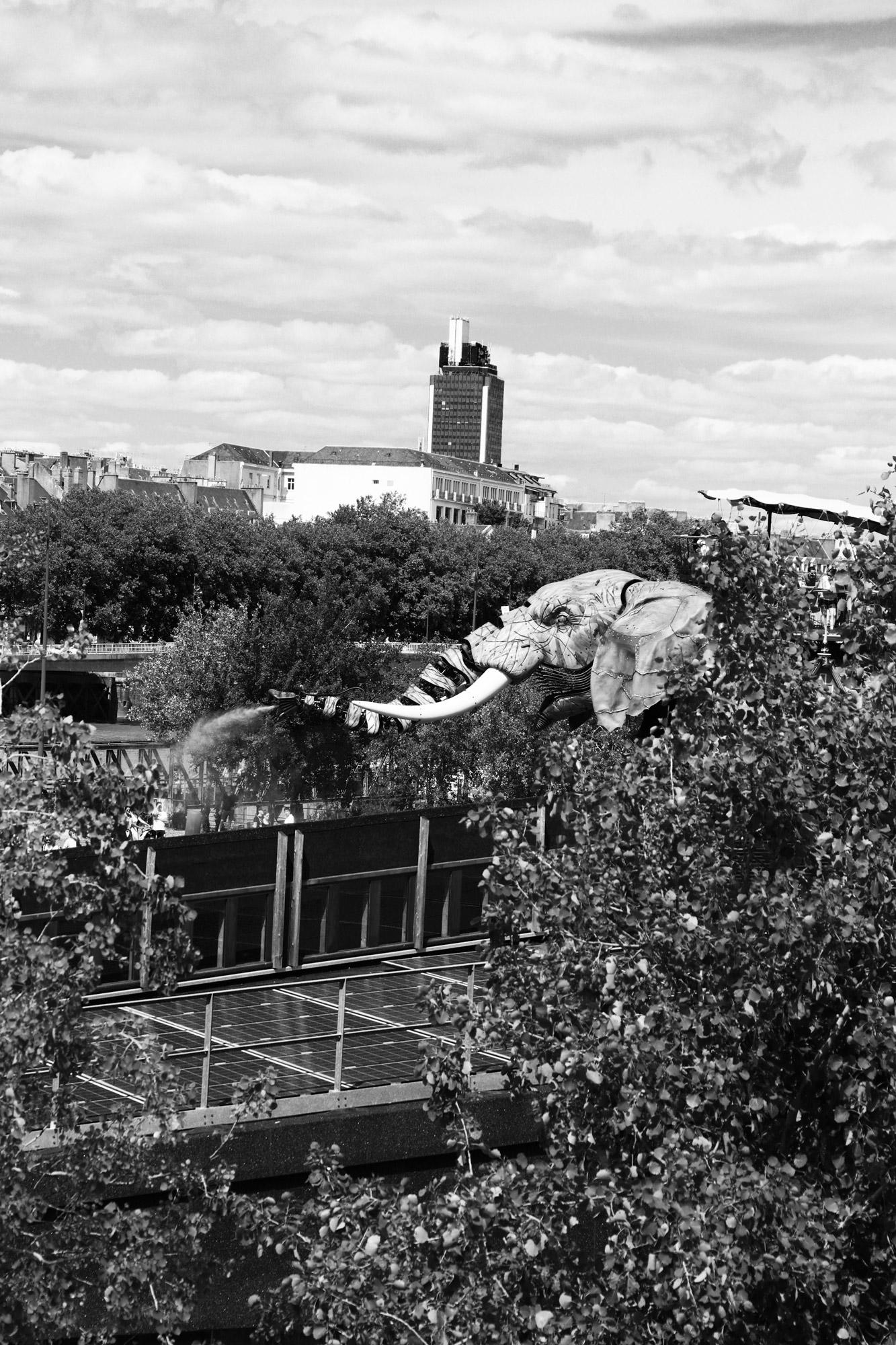 """""""Urban bush"""" - Les Machines de l'Île de Nantes. ©Clémence Rougetet"""