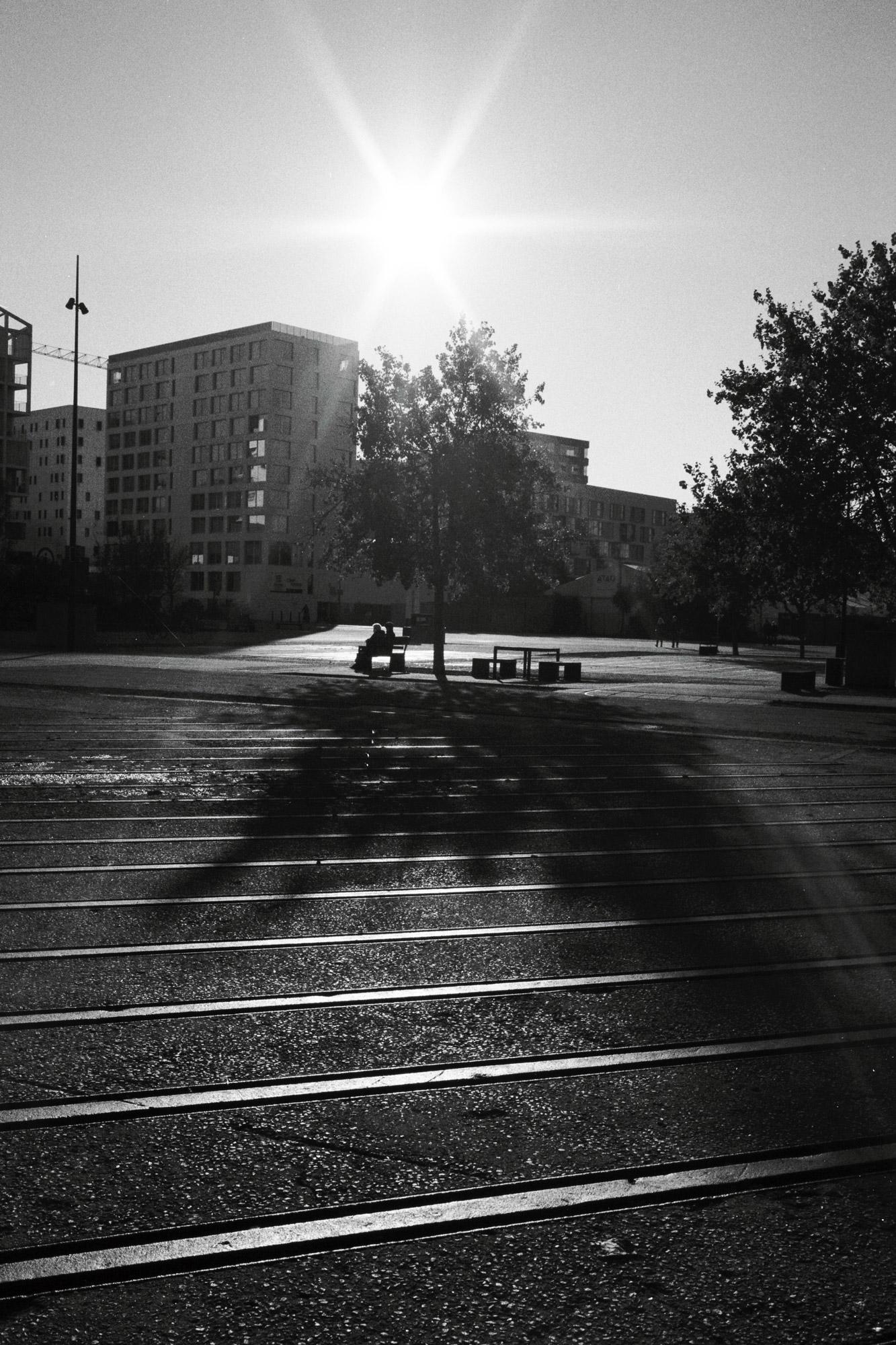 """""""Playing with the sun"""" - Les Machines de l'Île de Nantes (2020). Kodak T-Max 100 ASA. © Clémence Rougetet"""
