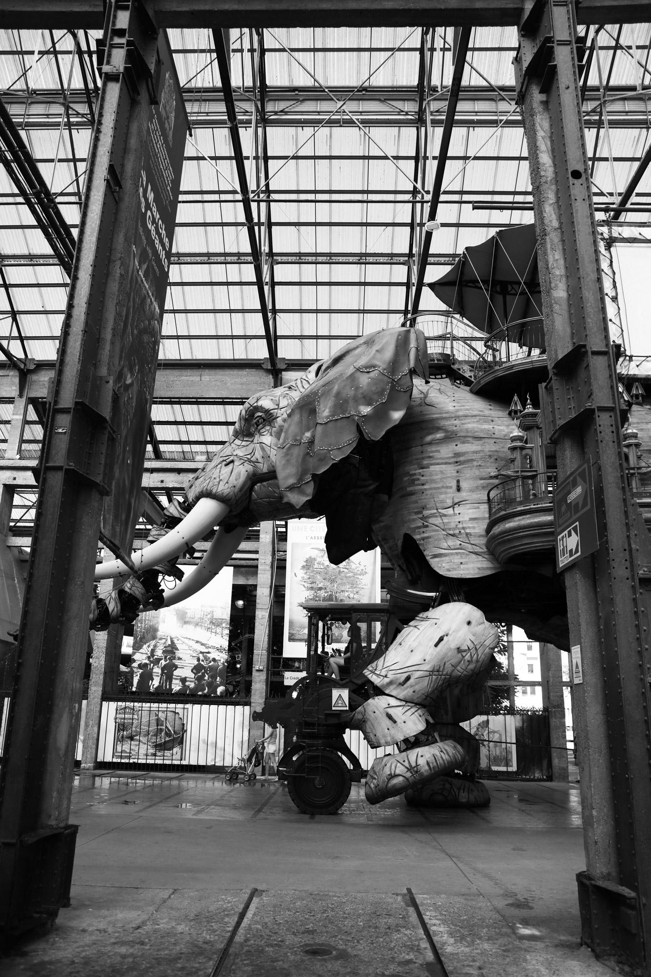 """""""The urban elephant""""- Les Machines de l'Île de nantes. ©Clémence Rougetet"""