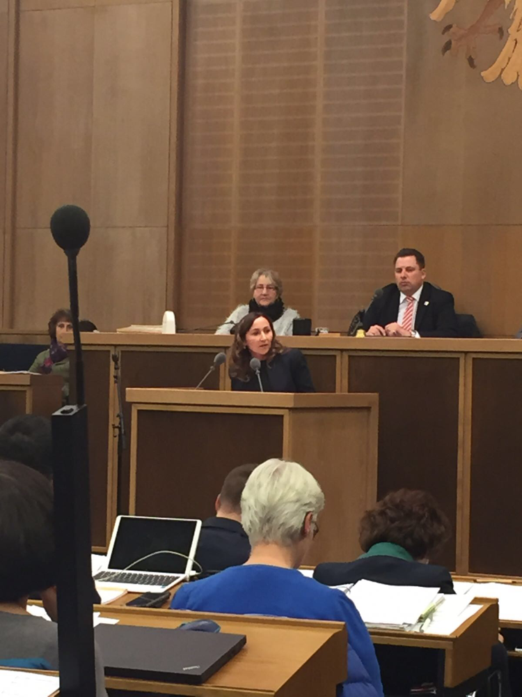 Meine erste Rede in der Stadtverordnetenversammlung