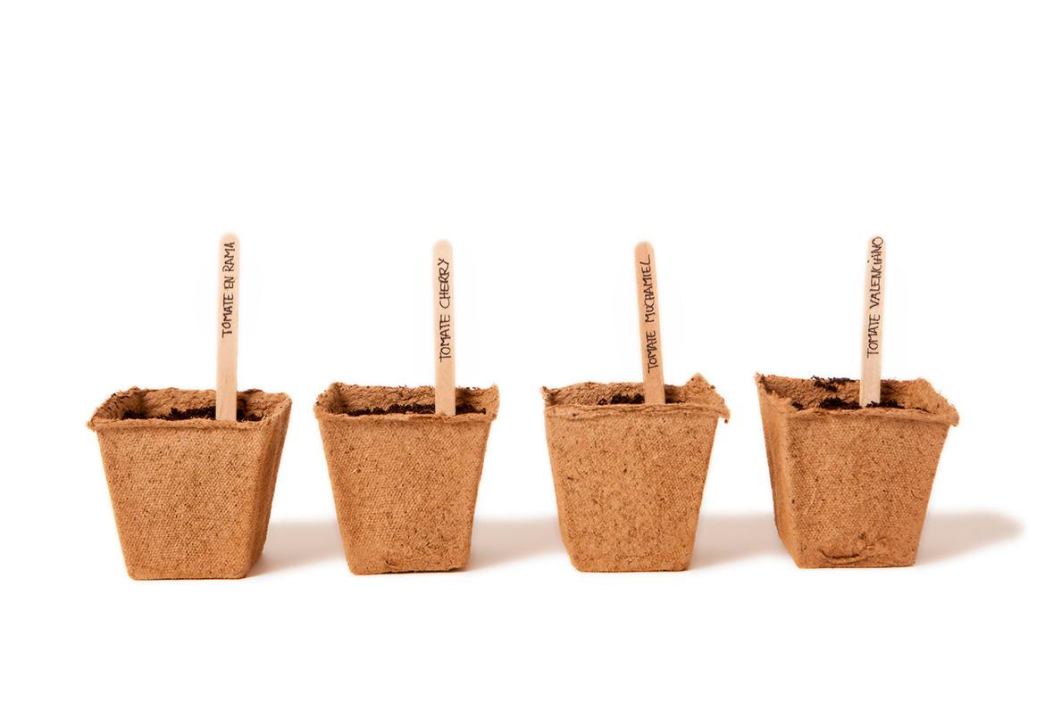 Kit para el cultivo de tomates productos con encanto - El tiempo en muchamiel ...