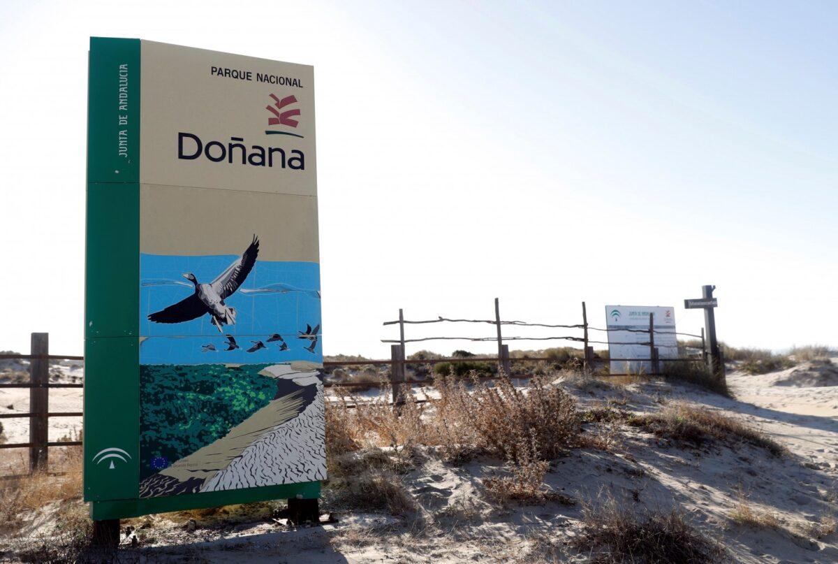 Varapalo del tribunal europeo a España por la mala gestión hídrica de Doñana...