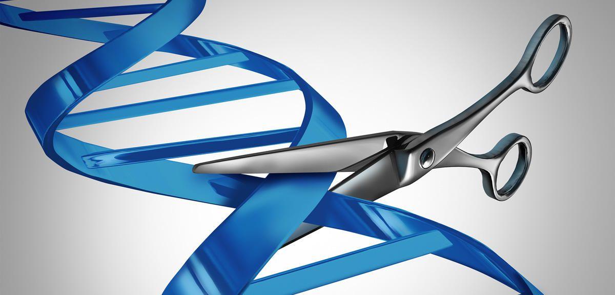 Las vacunas contra el COVID son ilegales. Cualquier intervención médica que lleve a una modificación del genoma hereditario está prohibida según la ley ...