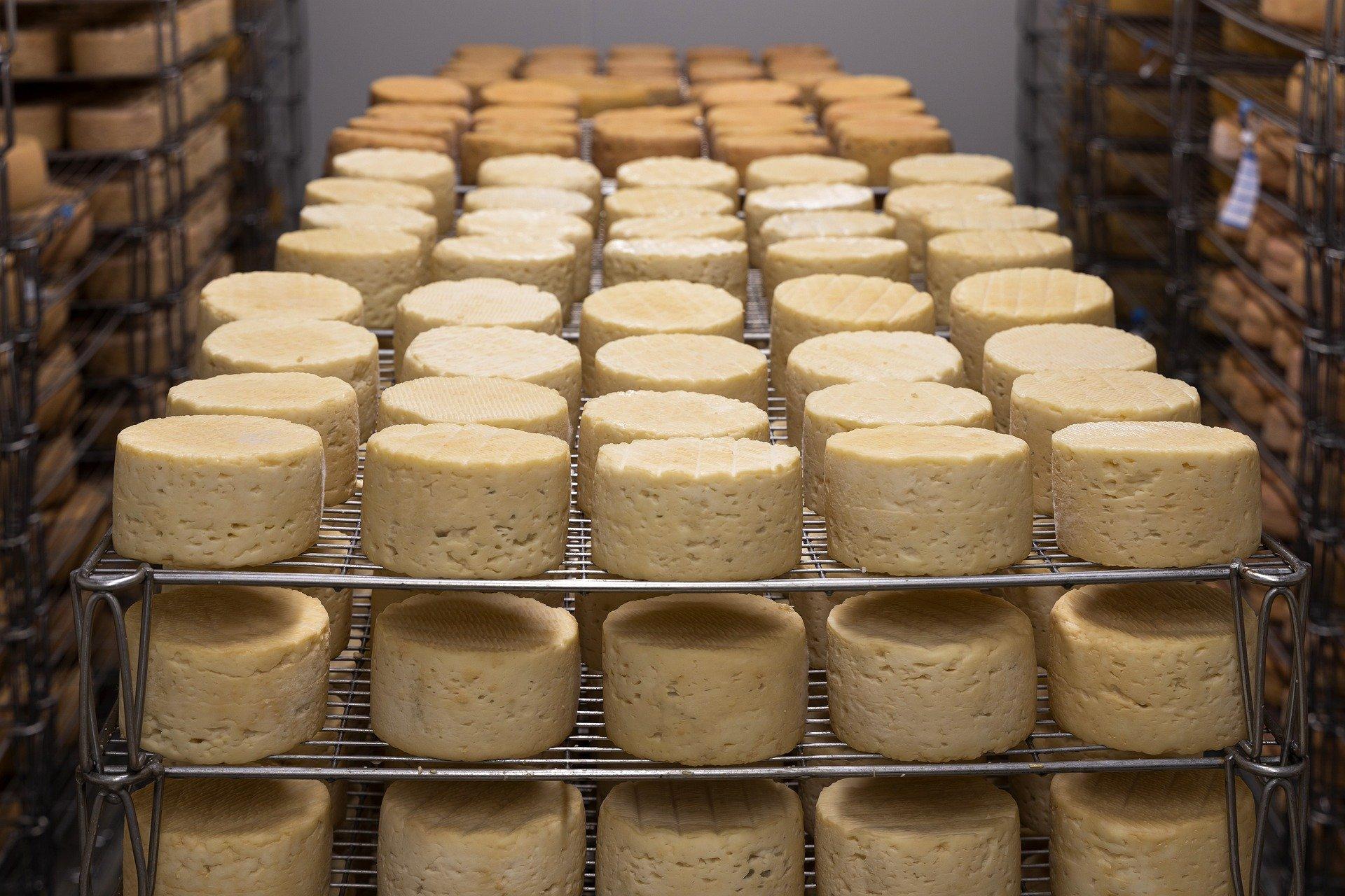 Ouvrier de fromagerie (H/F) - Intérim - Sens