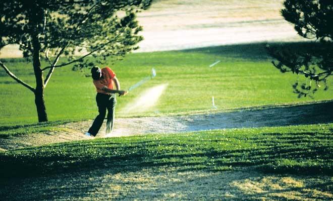 Golfen in der Region Bad Bevensen vom Hotel Waldesruh