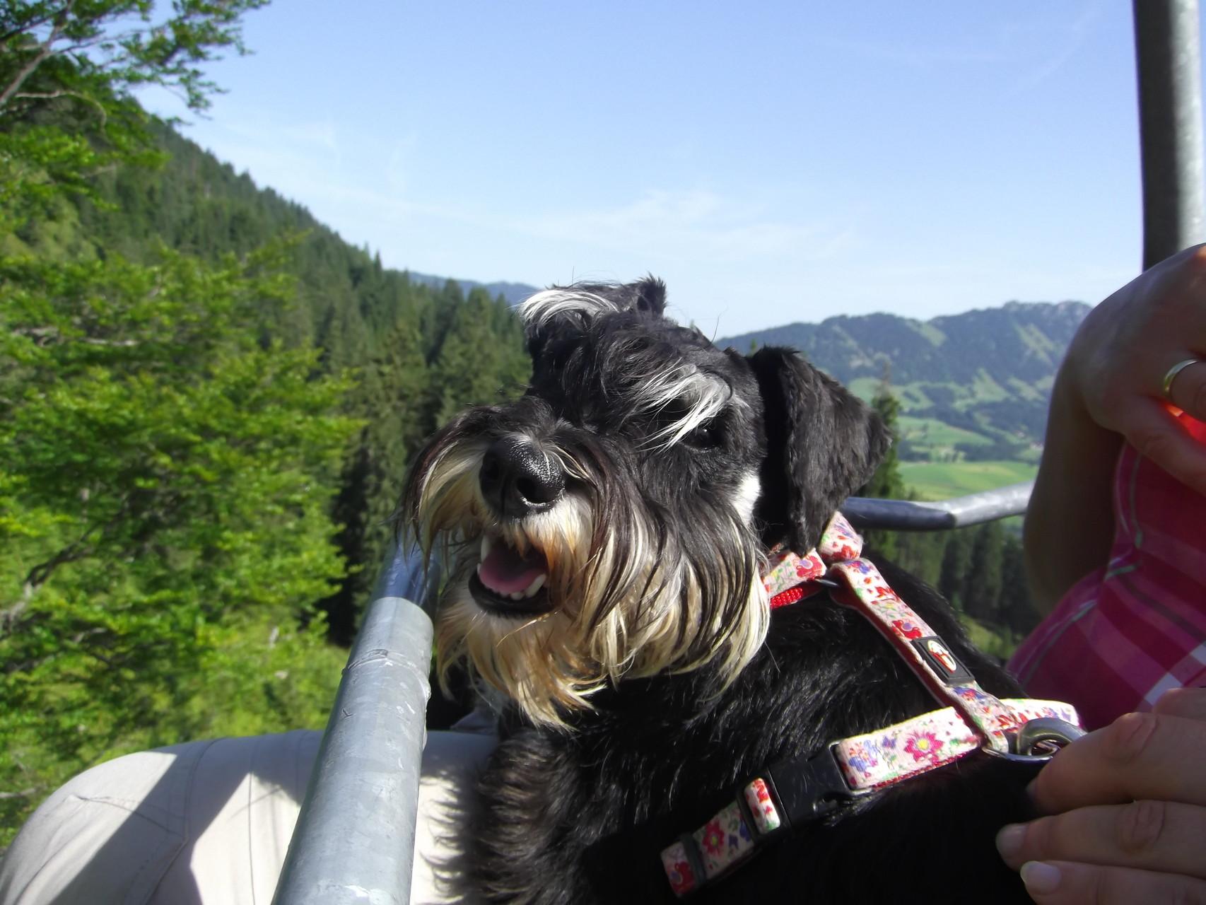 im Berglift