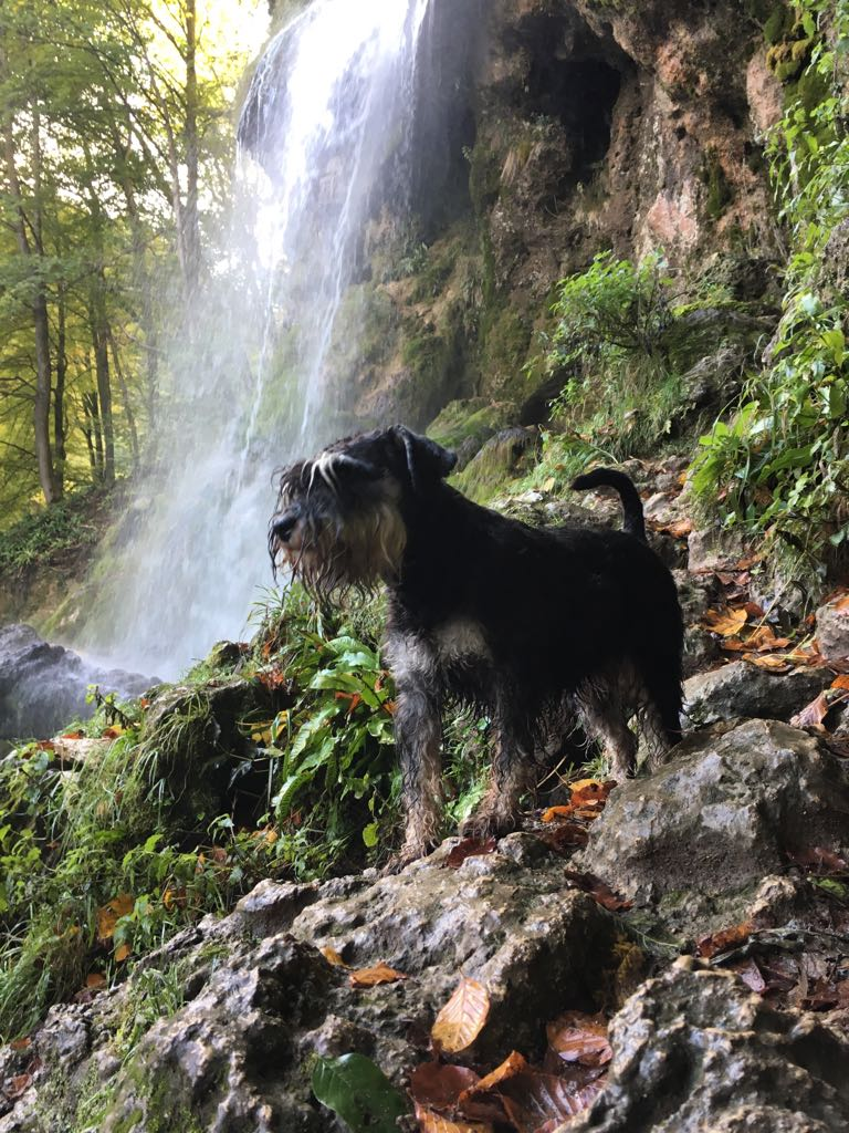 September 2017 bei den Uracher Wasserfällen