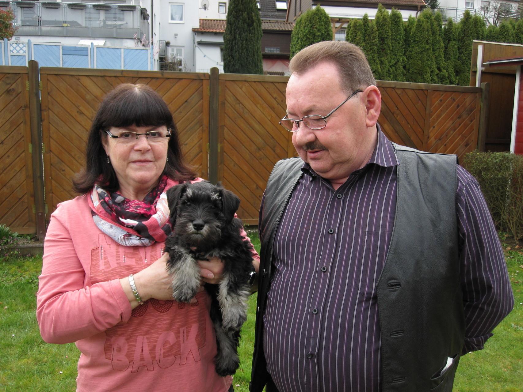 Belmonte mit 11 Wochen bei seinen Eltern