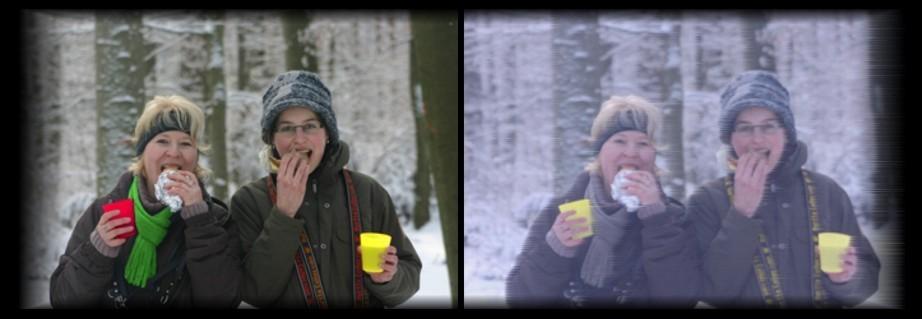 Zum Vergleich: Links das Bild wie es der Mensch sieht, rechts in etwa so, wie es ein Hund sieht.