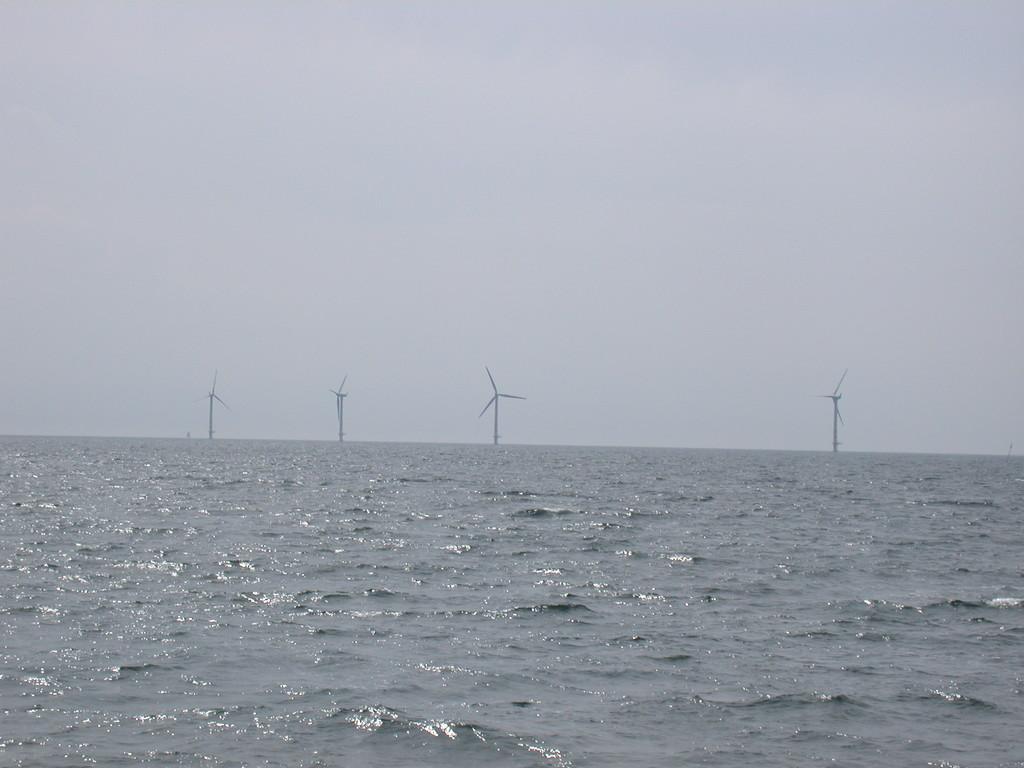 Windmühlen in Natur