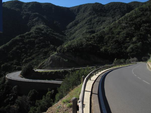 Straße durch den Parque Nacional de Garajonay