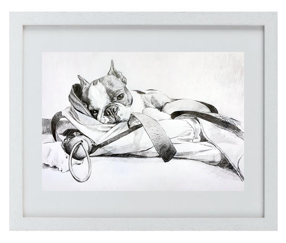 """Gold DIVA Zeichnung von """"Cuba"""" der französischen Bulldogge"""