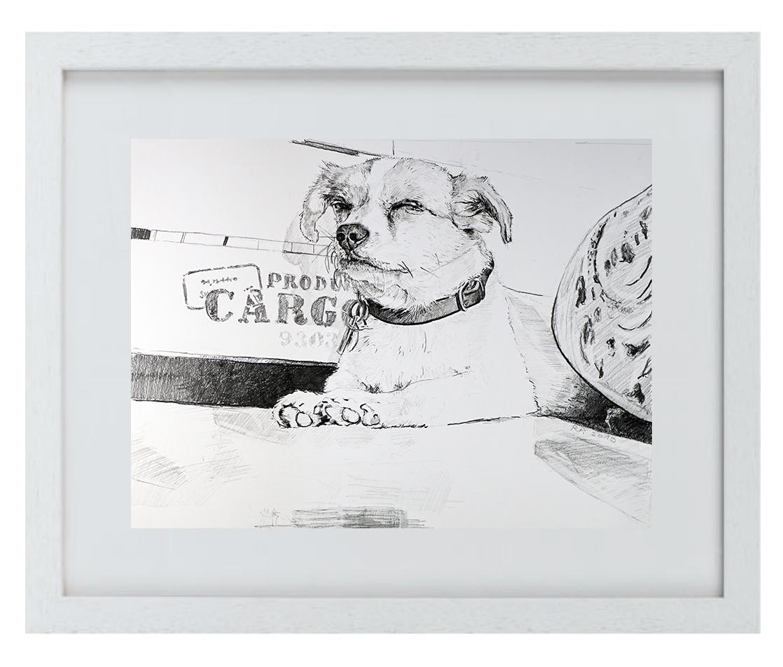 """Prima DIVA Zeichnung von """"Charly"""" dem  Terrier"""