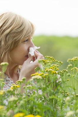 Allergien, Heuschnupfen und Asthma bronchiale | Dr. med. Gerald E. Müller