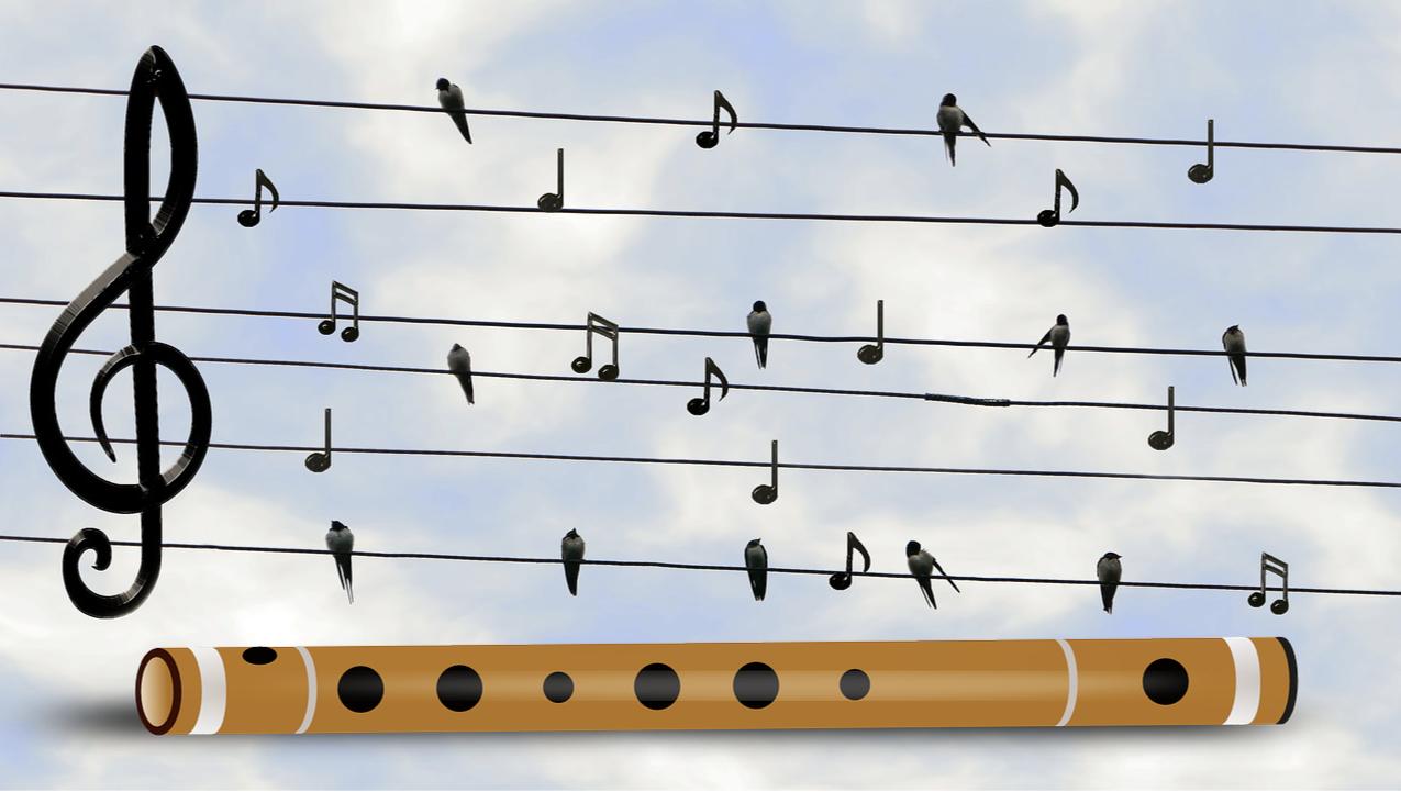 Zenei hallásfejlesztés