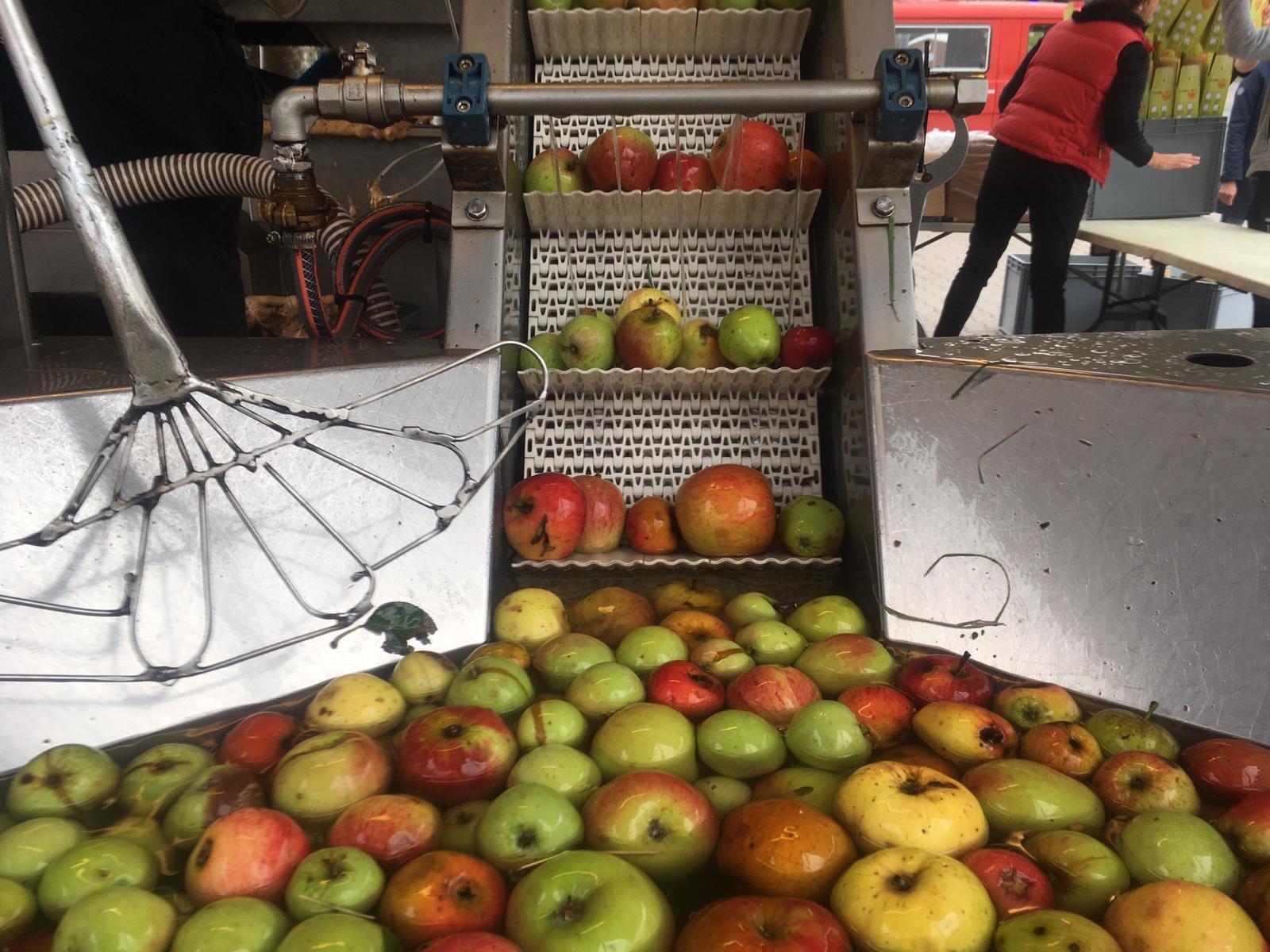 Eine automatische Apfelwaschanlage