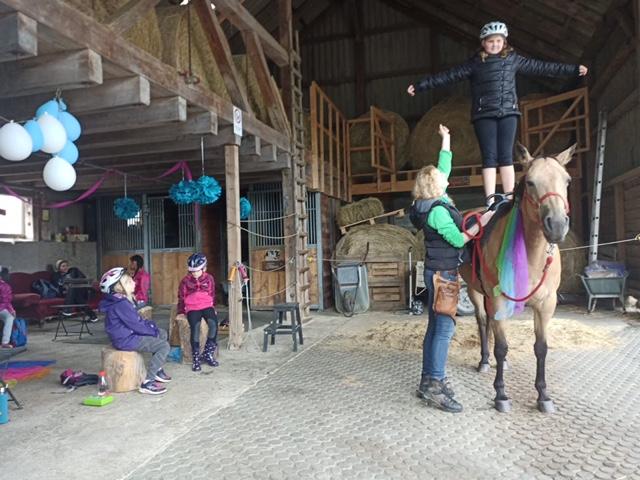 Und warum muss man auf einem Pferd überhaupt sitzen?