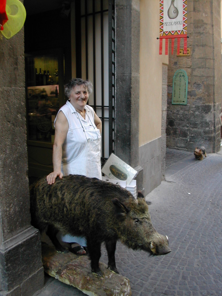 Andere Länder andere Haustiere