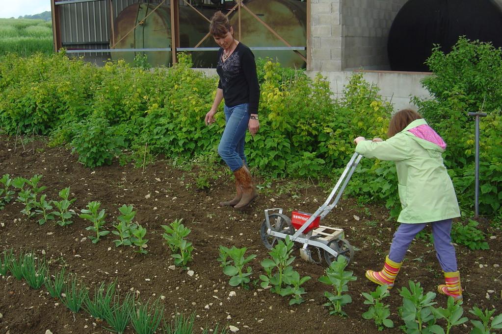 Le jardin est un bon support pour découvrir les vie des plantes !