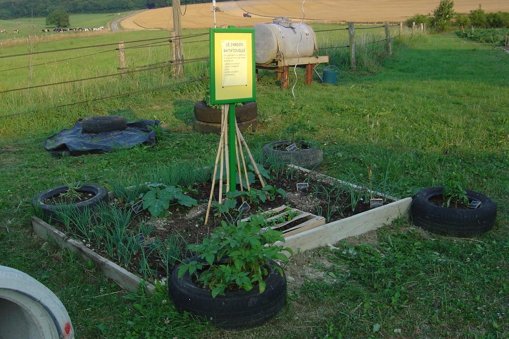 """Le jardin """"ratatouille"""" planté et entretenu par les élèves"""