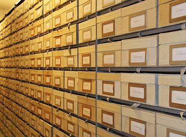 Een verzameling herbariumdozen  Naturalis Leiden
