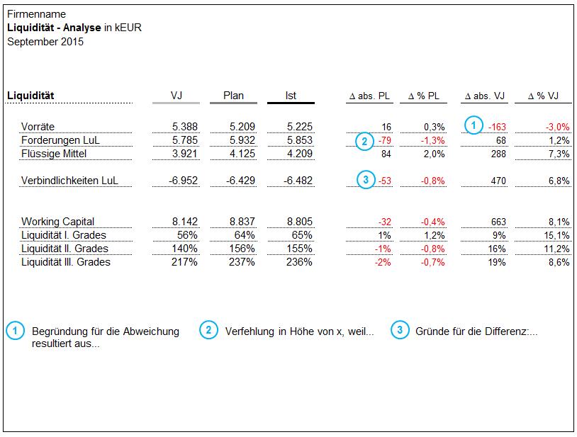 Liquiditäts Analyse - 9,00 Euro