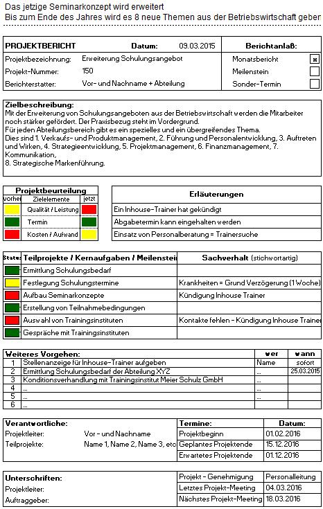 Projektbericht - 6,90 Euro
