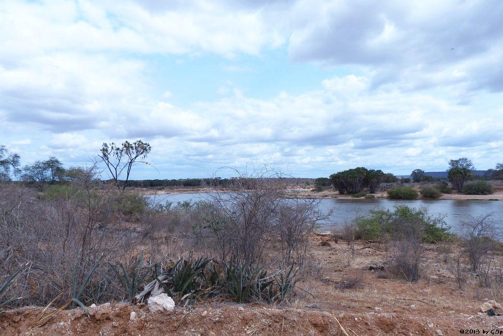 Galana-River