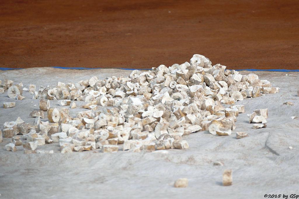 Maniok-Wurzeln (Cassava)