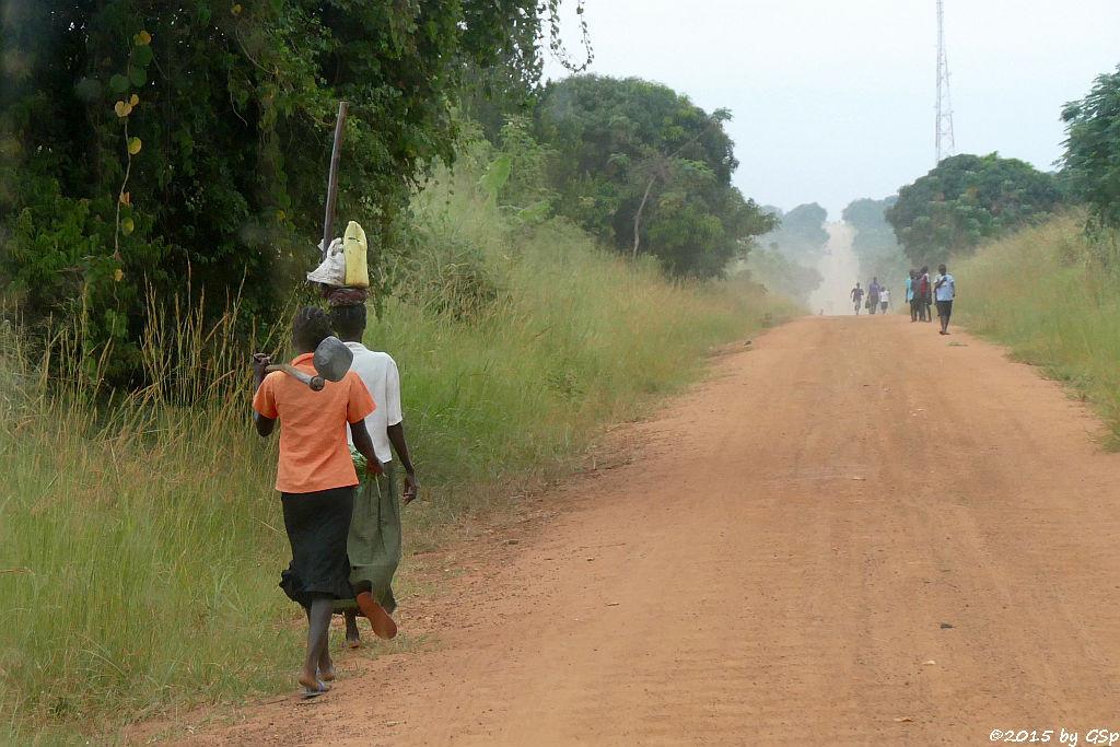 Fahrt vom Murchison Falls NP nach Fort Portal - 94 Fotos