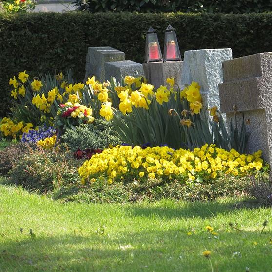 Kundengärtner / Friedhofsgärtner (m/w) - Ref. Nr.5064