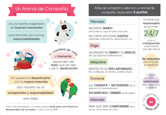 folleto A5 campaña eresresponsable MAPAMA