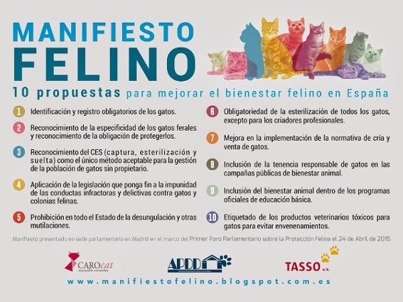 Manifiesto Felino