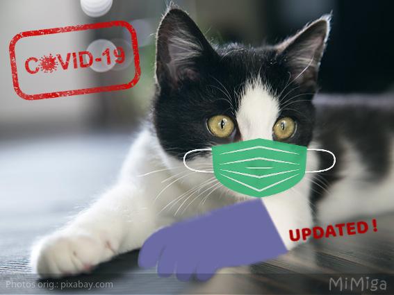 coronavirus-animales-gato-mascarilla-guante