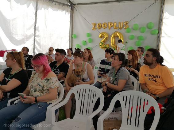 20-aniversario-zooplus-encuentro-blogueros-gatunos-wanda-metropolitano-madrid