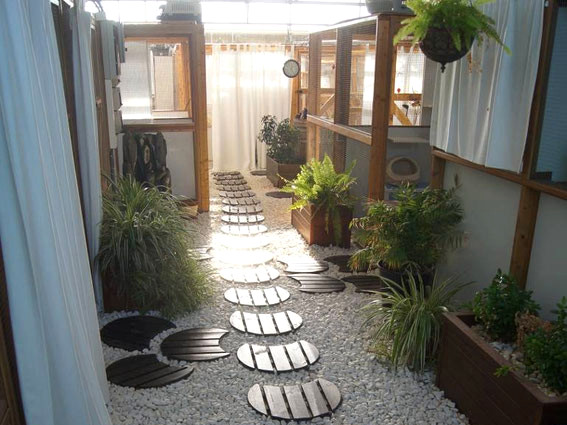 gatosphera-hotel-felino-madrid-spain