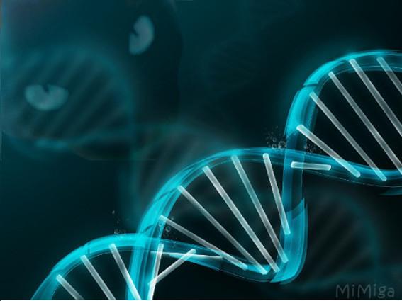 Descifran el ADN del gato
