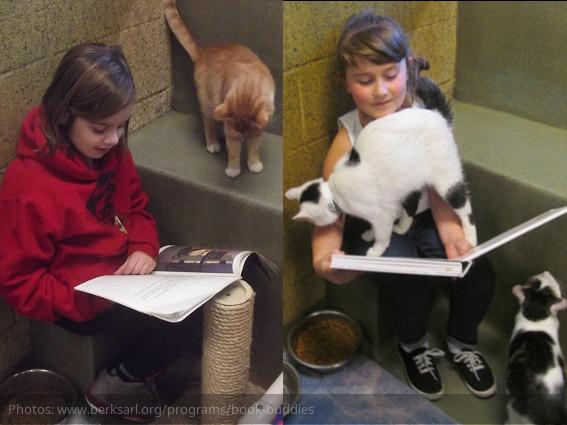Niños leyendo a gatos & perros